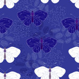 Deep blue butterfly Royalty Free Stock Photos