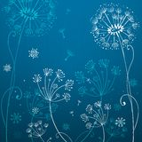 Deep blue dandelion flowers Stock Image