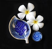 Deep blue leaf shape ceramic dish Royalty Free Stock Image