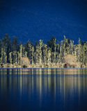 Deep Blue Reflections. Trees reflect in the still water of Lake Brunner (Moana Kotuku, Heron Sea) on New Zealand's South Island Royalty Free Stock Photography