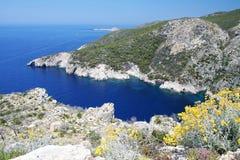 Deep blue sea bay with springtime flowers in Zakynthos royalty free stock photo