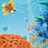 Deep blue sea with coral reefs and sea anemones Royalty Free Stock Photo