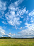 Deep blue sky with green field. Bright blue sky with green field Stock Images