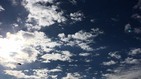 Deep blue sunny sky with white clouds. Blue sky with cloud close-up. White fluffy clouds in the blue sky. copy space for text or i. Deep blue sunny sky with stock footage
