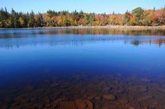 Deep Blue Wilderness Lake. Wide shot of  clean freshwater lake in Nova Scotia Stock Photos