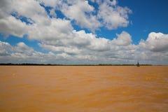 Deep Brown Mekong river Stock Images