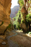 Deep Canyon. The deep gorge - wadi, leading from Jordan Mountains to Dead Sea Royalty Free Stock Photos