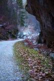 Deep canyon Royalty Free Stock Photo