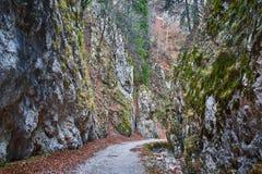 Deep canyon Royalty Free Stock Image