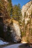 Deep canyon Stock Images