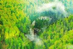 Deep canyon and mountain forest. Stock Photography
