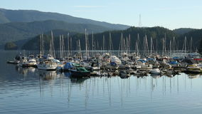 Deep Cove Yacht Club, North Vancouver stock footage