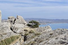 Deep crack in the rock. Crimea Stock Images