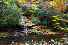 Tom Branch Falls and Creek Royalty Free Stock Photography