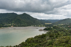 Deep end of Huia Bay with mud flats. Stock Images