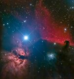 Horsehead Nebula royalty free stock photography