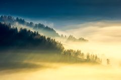 Deep fog above the valley at sunrise. Beautiful autumn background in mountains. lovely nature abstract scenery royalty free stock photography