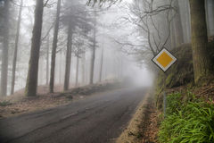 Deep fog on the forest road in mounts of Madeira island Royalty Free Stock Images