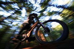 Deep Forest. A heavily blurred mountain biker on a trail in Vancouvers famous North Shore mountains stock photos