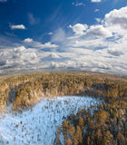Deep forest. Deep in wild winter forest Panoramic view Stock Image