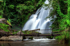 Deep forest big waterfall Royalty Free Stock Image
