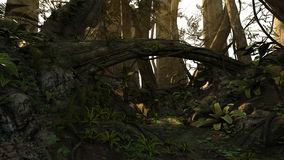 Deep forest. 3D rendered illustration of sunset deep forest Royalty Free Stock Image