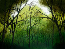 Deep Forest - Digital Painting. Digital illustration of a deep green forest Stock Images