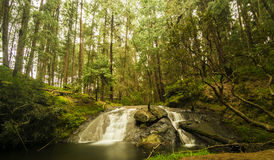 Deep forest Gundar waterfalls in serene surroundings. The beautiful Gundar Waterfalls are located in deep forest on the way to the Poomparai Village at a royalty free stock images