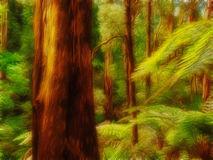 Deep forest. Illustration made of picture of deep forest in Victoria, Australia Stock Image