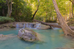 Deep forest jungle, water fall in spring season Stock Photography