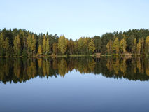 Deep forest lake Royalty Free Stock Photo
