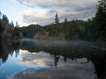 Deep Forest Lake Stock Photo