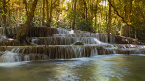 Deep forest natural waterfall Royalty Free Stock Photography