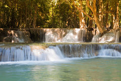 Deep forest stream waterfall Royalty Free Stock Photography