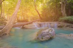 Deep forest tropical waterfall natural landscape Stock Photos