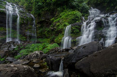 Deep forest water fall Stock Image