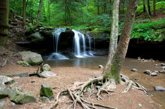 Deep Forest Waterfall. Photograph of a small waterfall deep in the shaded forest of the Appalachians Royalty Free Stock Photos