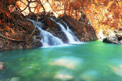 Deep forest waterfall in autumn at Sarika Waterfall World Herita Royalty Free Stock Photo