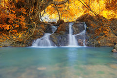 Deep forest waterfall in autumn at Sarika Waterfall World Herita Royalty Free Stock Image