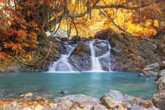 Deep forest waterfall in autumn at Sarika Waterfall World Herita Royalty Free Stock Images