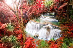 Deep forest waterfall in autumn scene at Huay Mae Kamin waterfal Royalty Free Stock Photo