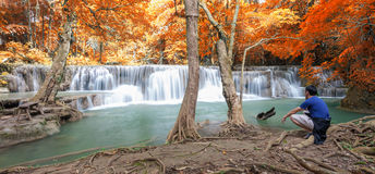 Deep forest waterfall in autumn scene at Huay Mae Kamin waterfall royalty free stock photos