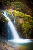 Deep forest waterfall in the Carpathians. Deep forest waterfall in the Carpathian mountains, Shypit Stock Photography
