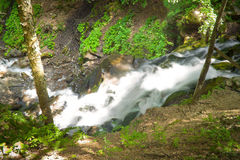 Deep forest waterfall in the Carpathians Royalty Free Stock Photography