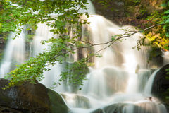 Deep forest waterfall in the Carpathians Stock Photo
