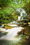 Deep forest waterfall in the Carpathians Stock Image