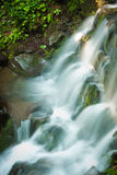 Deep forest waterfall in the Carpathians Royalty Free Stock Photos