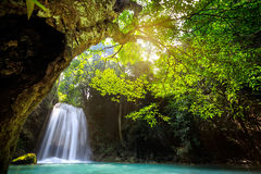 Deep forest waterfall Stock Images