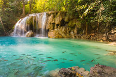 Deep forest waterfall at Erawan waterfall locate in National Park Kanjanaburi. Of Thailand Stock Photography