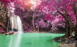 Deep forest waterfall at Erawan waterfall National Park Kanchana. Buri Thailand Royalty Free Stock Images
